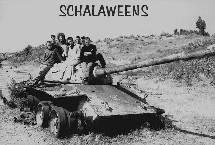 Schalaweens