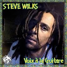 Steve Wilks