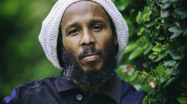 Ziggy Marley Interview More Family Time