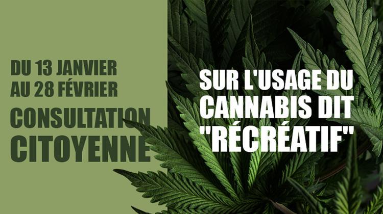 Le Cannabis récréatif à l'étude