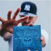 Dub Inc - Interview Millions
