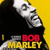 Interview Bob Marley avec Francis Dordor