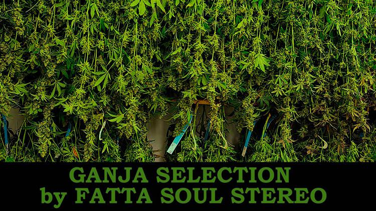Ganja Selection by Fatta Soul Stereo