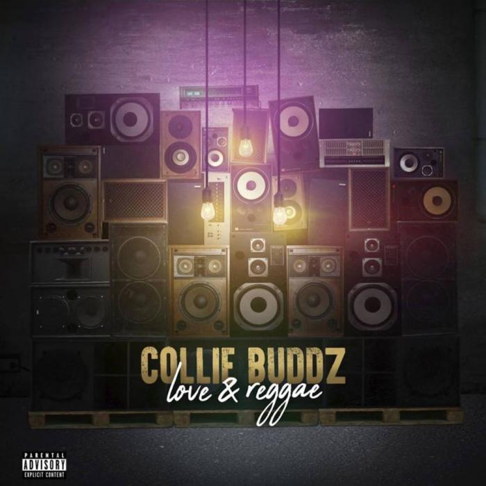 Collie Buddz : 'Love & Reggae' le clip