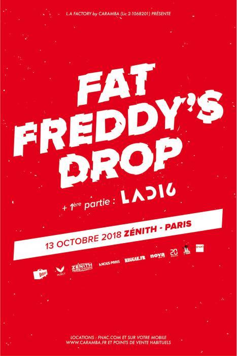Fat Freddy's Drop au Zénith de Paris