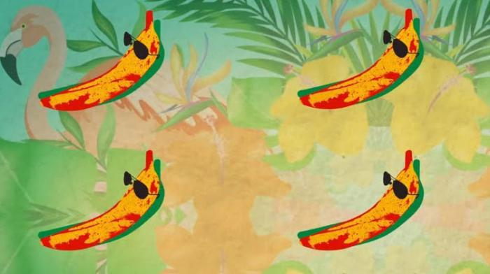 Shaggy & Conkarah : 'Banana' le remix de Dj Fle