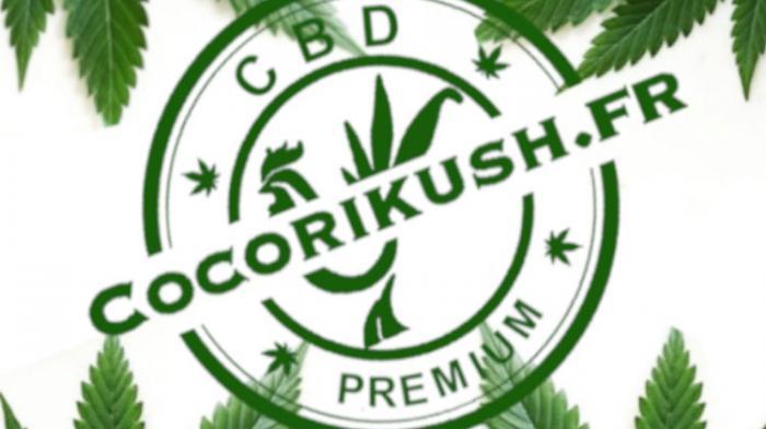 Cocorikush : pour un CBD accessible à tous