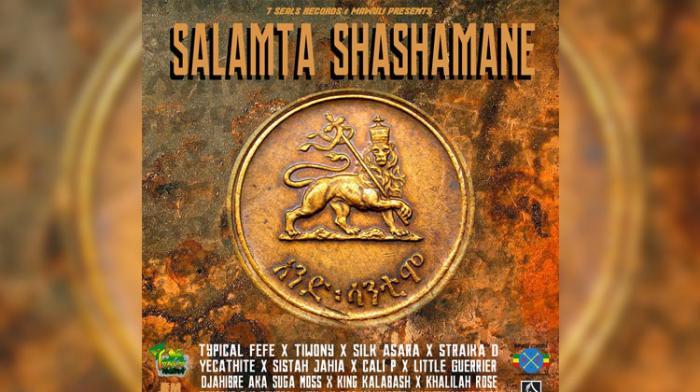 Un collectif d'artistes en soutien à Shashamane