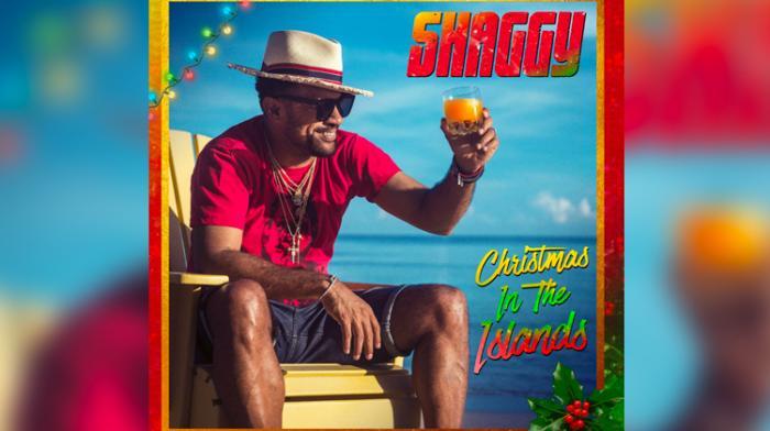 Un album de Noël pour Shaggy !
