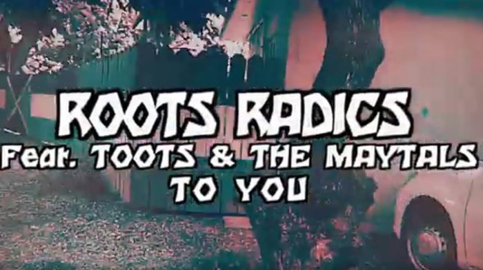 Roots Radics feat. Toots & The Maytals - To You