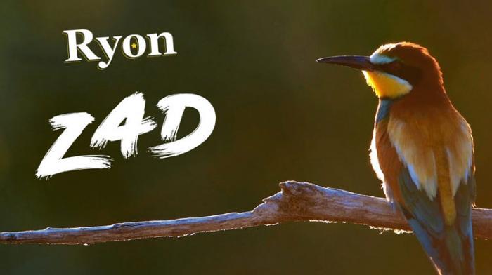 Ryon : ZAD le clip