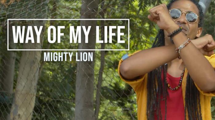 Le mode de vie Mighty Lion