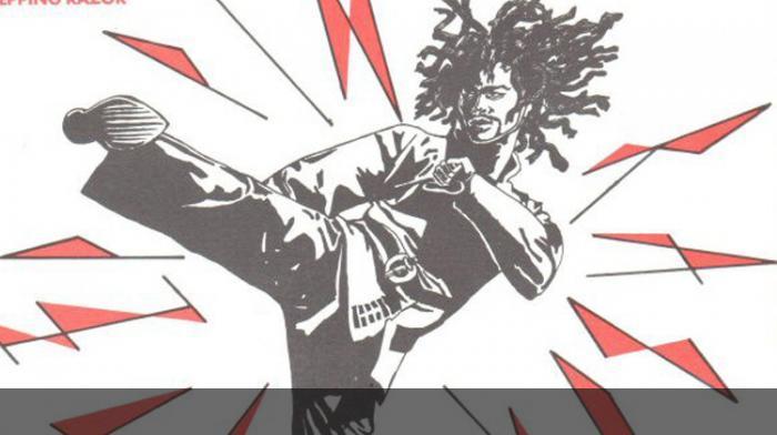 Le Reggae et les Arts Martiaux